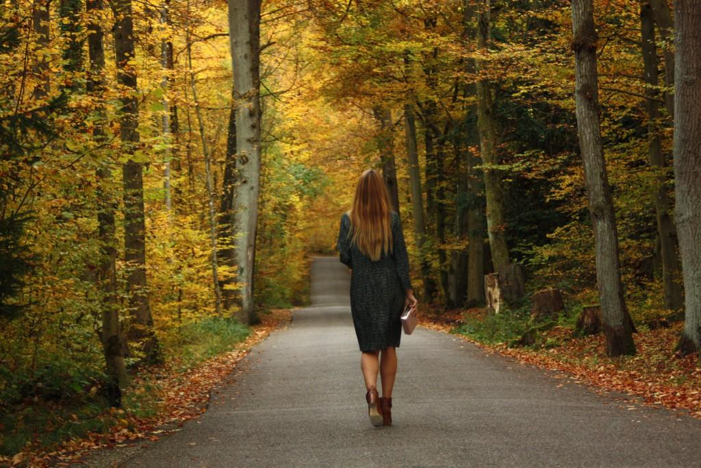 SVIRIG BLOG POST Swiss Scandinavian Autumn Goldenberg 1