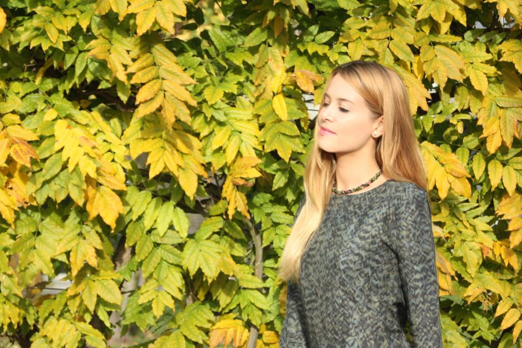 SVIRIG BLOG Post Autumn