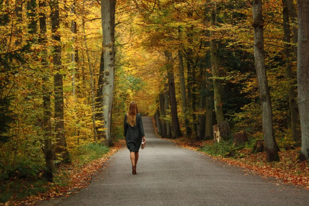 SVIRIG BLOG POST Swiss Scandinavian Autumn Goldenberg 2
